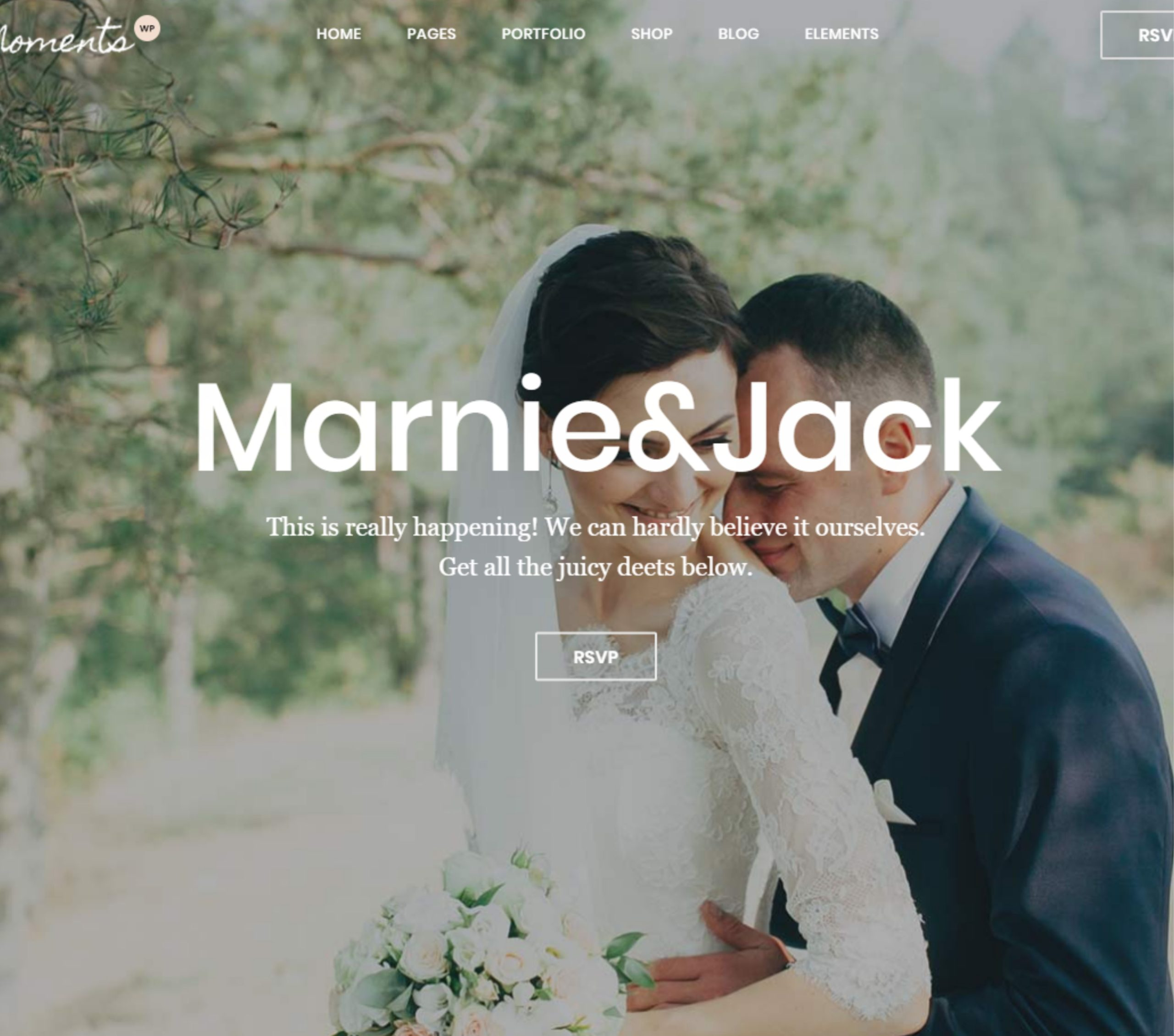 Wedding Web Site | MASTROiNCHIOSTRO